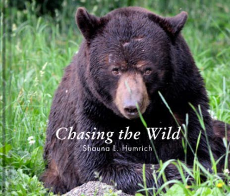 Chasing the Wild - Photography Book by Shauna L Humrich